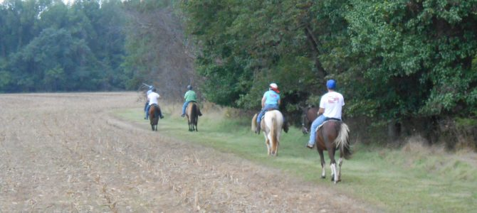 You, Your Horses, and Sunday Hunting!