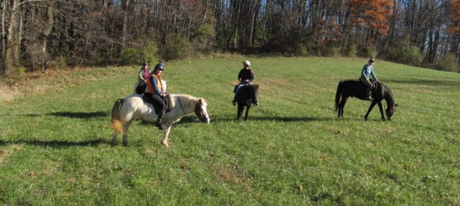 Sunday Hunting in Cecil County – Updates!