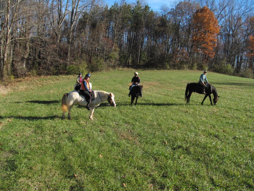 TROT News and Updates – Trail Riders of Today (TROT)
